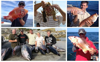 Deep Sea Fishing<br>half day or full day<br>