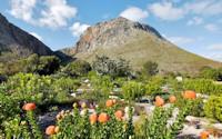 Harold Porter<br>Botanical garden<br>approximately 3-5 hours